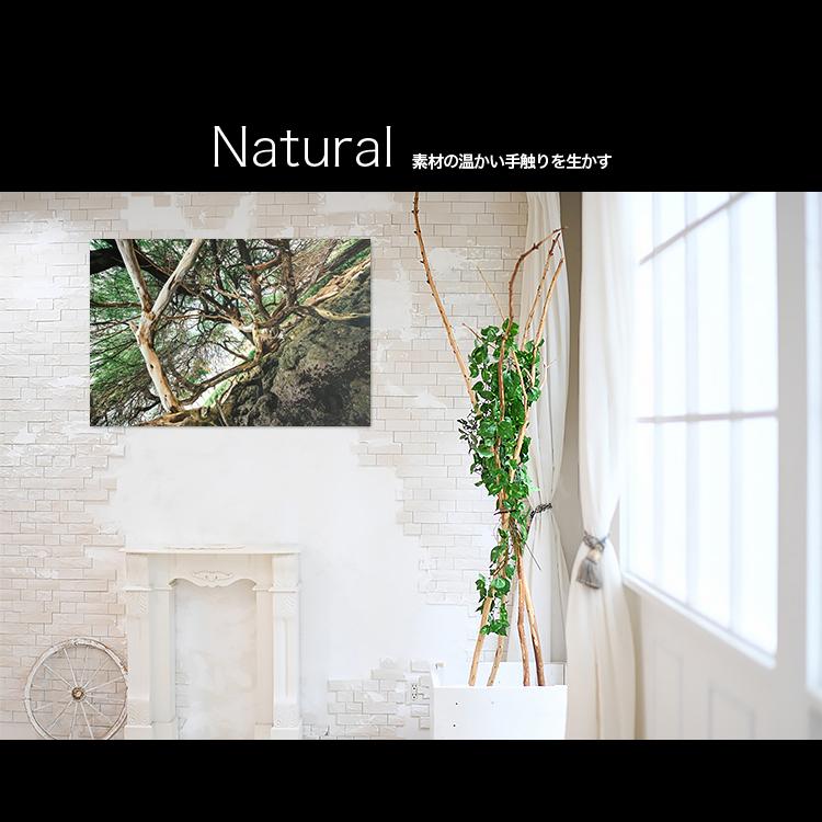 アートパネルで部屋をおしゃれに!壁掛けアートフレーム インテリア小物 artmart アートマート 人気のファブリックパネル、アートボードやアートポスター。 自然_木_20130727-015
