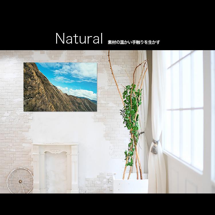 アートパネルで部屋をおしゃれに!壁掛けアートフレーム インテリア小物 artmart アートマート 人気のファブリックパネル、アートボードやアートポスター。 風景_山_20130729-049