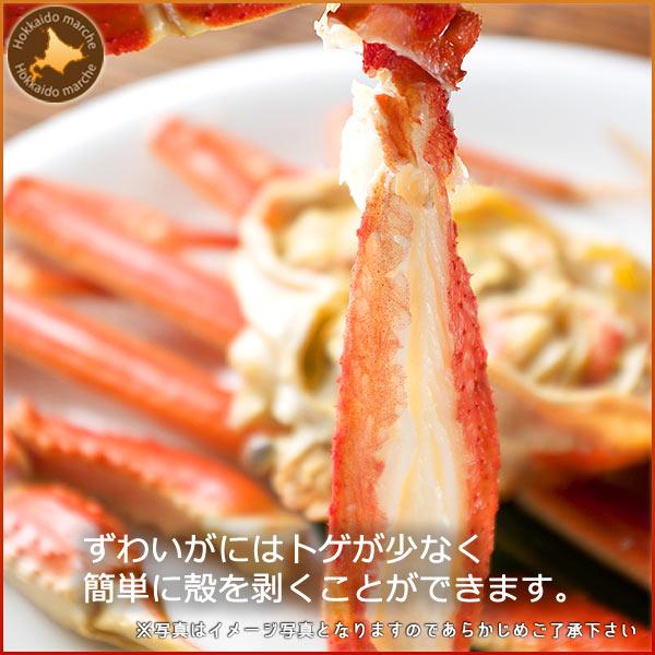 【かに カニ 蟹】 ズワイガニ姿500g×1尾 すっきりした甘みの贈り物に最適なズワイガニ姿 カニの中でも人気のズワイガニ姿 内祝い 御祝い 御礼 お返し お取り寄せ 通販