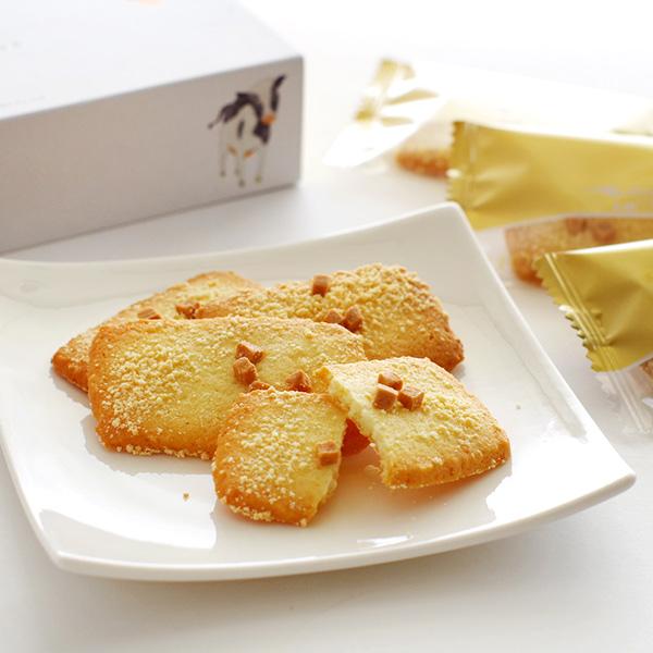 [北见铃木] nodoca 北海道奶酪饼干