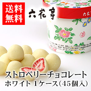 【送料無料】六花亭 ストロベリーチョコ ホワイト 100g 1ケース(45個)ハロウィン 2019