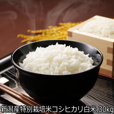 新米 30年産 新潟県特別栽培米 コシヒカリ白米 30kgを10kg×3袋(精米後は27~28kg)にて発送 【白米 30kg 送料無料】 残留農薬0 (ほぼ 無農薬)安心安全米