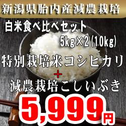 送料無料 精米選択可 ! 超美味激安! 厳選こしいぶき 29年産新潟えちご上越農協提携販売店 玄米10kg