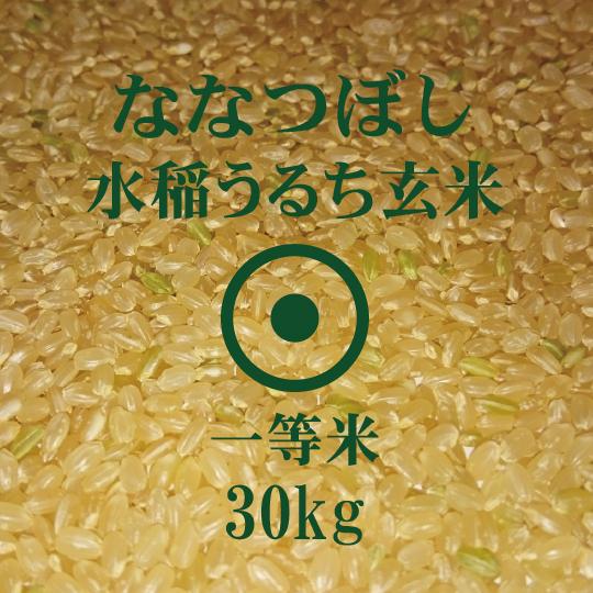 食味ランキング10年連続 特A 評価獲得 令和2年産 ななつぼし 日時指定 世界の人気ブランド 30Kg 重量商品につき送料無料対象外 玄米 北海道米 一等米