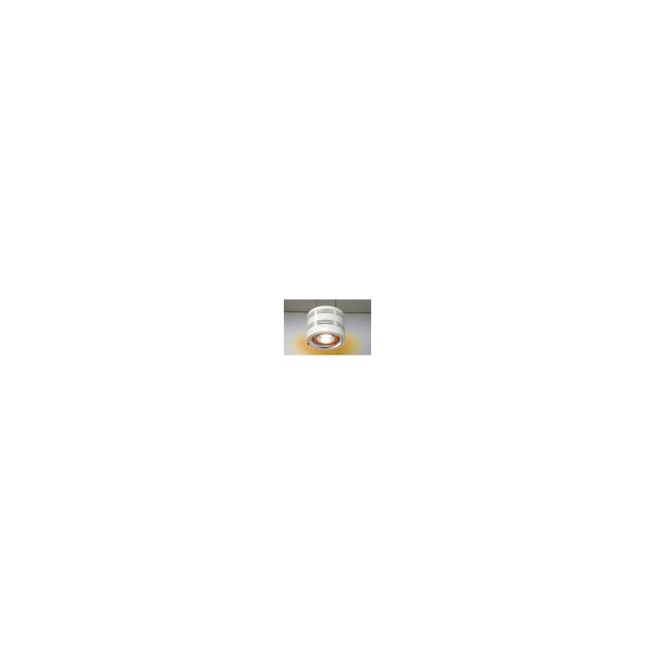 リフォーム用品 トイレ バリアフリー トイレ 暖房機:パアグ ヒーター内蔵型天井照明ポカピカ 吊下げ型, 広尾町:2ad93690 --- mail.ciencianet.com.ar