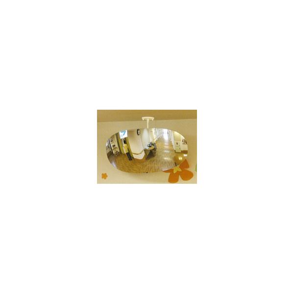 リフォーム用品 建築資材 外まわり ミラー:コミー スーパーオーバル ミラー部サイズ:680X330mm 1.17kg