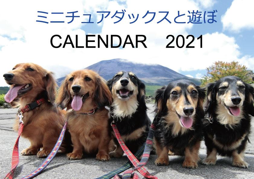 予約販売 2021年 壁掛けカレンダー 限定品 ミニチュアダックスと遊ぼ 値下げ KK21001