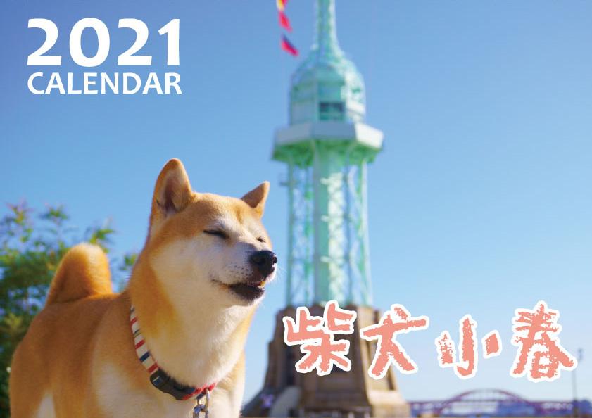 送料無料カード決済可能 予約販売 2021年 壁掛けカレンダー KK21015 上品 柴犬 小春