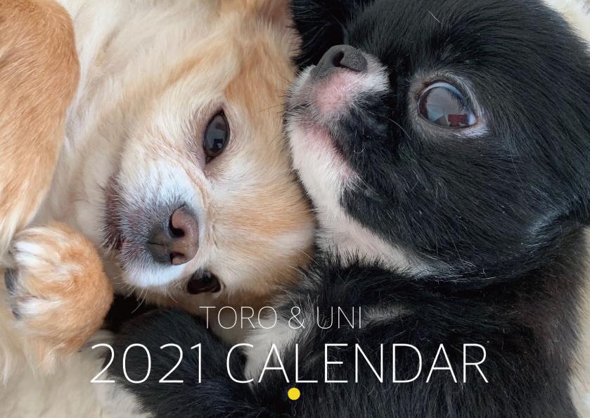 予約販売 2021年 ※アウトレット品 壁掛けカレンダー KK21020 推奨 チワワ TOROUNI