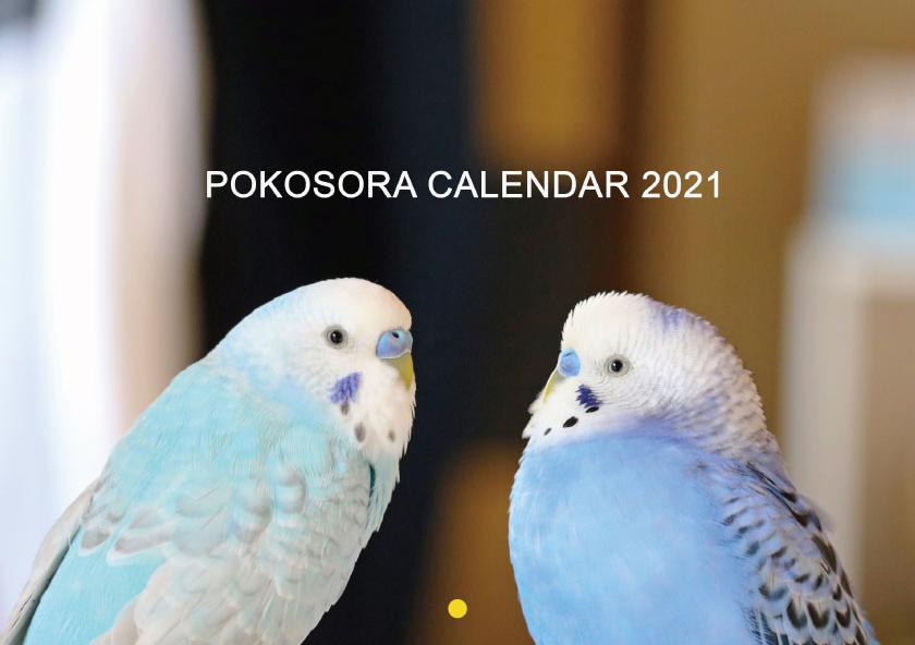 予約販売 2021年 超激得SALE 壁掛けカレンダー pokosora 新作 セキセイインコ KK21024