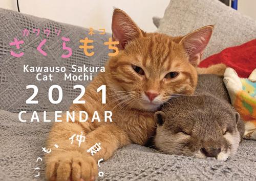 予約販売 2021年 壁掛けカレンダー 新商品 カワウソ 店舗 もち 猫 KK21027 さくら