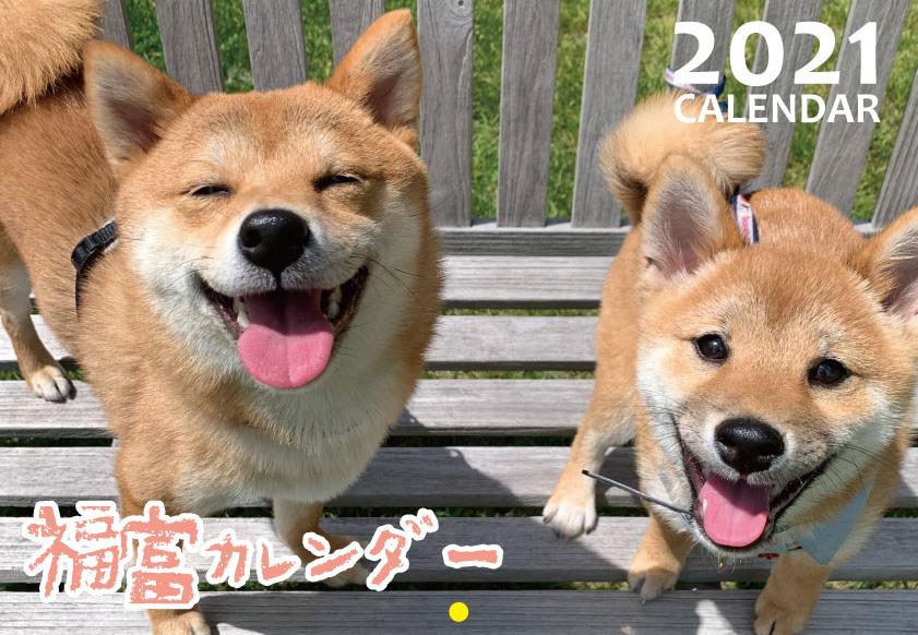 予約販売 2021年 壁掛けカレンダー KK21078 福ちゃん富くん 豆柴 激安通販 大規模セール