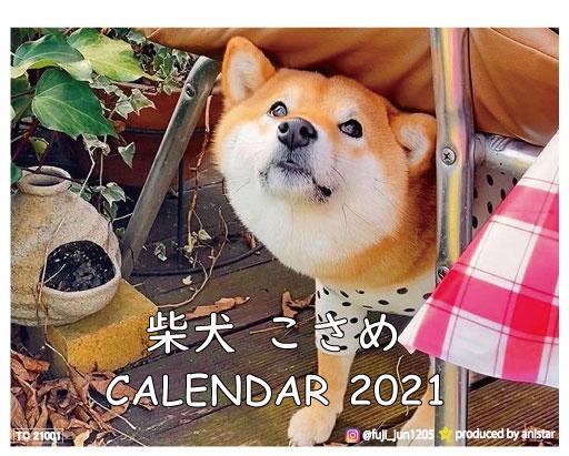 予約販売 2021年 卓上けカレンダー 柴犬 セール商品 大規模セール TC21088 こさめ 卓上カレンダー