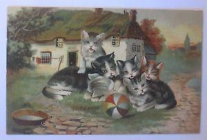【送料無料】ネコ 猫 ネックレス ネコボールゲーム190365185cats, kittens, ball, games, advertisement, 1903, 65185