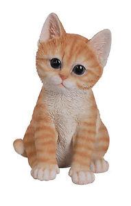 【送料無料】猫 ネコ キャット 置物 ペットパルジンジャーvivid arts pet pals ginger kitten resin ornament