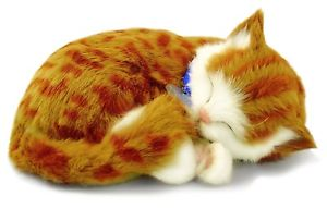 【送料無料】猫 ネコ キャット 置物 オレンジ88 unlimited orange tabby