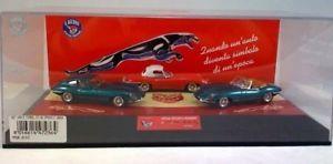 【送料無料】模型車 モデルカー スポーツカークラブツインカムジェジャガースパイダーモデルjm 2121801 club twin cam je317b set jaguar e hardtop red spider model