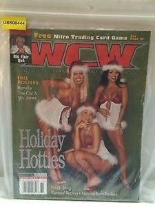 【送料無料】模型車 モデルカー スポーツカーレスリングマガジンtas030413 wwe wwf wcw wrestling magazine holiday hotties