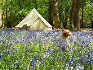 【送料無料】キャンプ用品 ジグザグベルテントコットンキャンバスstandard 5m zig bell tent cotton canvas uv resistant with detachable floor