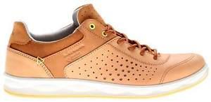 【送料無料】キャンプ用品 サンフランシスコゴアテックスサハラlowa san francisco ws goretex womens sahara travel shoes uk 5