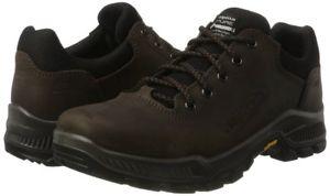 【送料無料】キャンプ用品 アルピナプリマサイズウォーキングハイキングシューズサイズalpina prima low 2 size 12 uk walking hiking shoes  amp; size gauged 680378