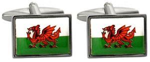 【送料無料】メンズアクセサリ― ウェールズドラゴンカフリンクスnovelty welsh dragon flag cufflinks