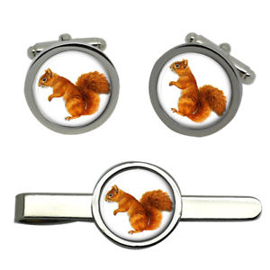 【送料無料】メンズアクセサリ― ラウンドタイクリップセットred squirrel round cufflink and tie clip set
