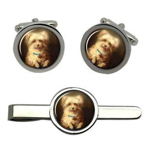 【送料無料】メンズアクセサリ― ラウンドタイクリップセット listinggriffon bruxellois round cufflink and tie clip set