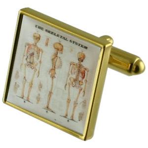 【送料無料】メンズアクセサリ― ゴールドカフスリンクskeleton bones gold square cufflinks with engraved personalised case
