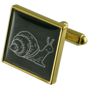 【送料無料】メンズアクセサリ― カタツムリゴールドスクエアカフリンクスsnail animal gold square cufflinks with engraved personalised case