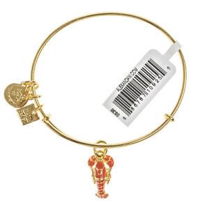 【送料無料】アクセサリー ネックレス アレックスロブスターユニセフゴールドブレスレットalex and ani aragosta unicef oro braccialetto cbd 16 lsygrrp 33