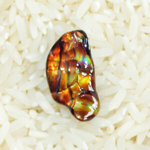 【送料無料】ネックレス アリゾナfire agate gem aaa quality from slaughter mountain arizona 741 ct