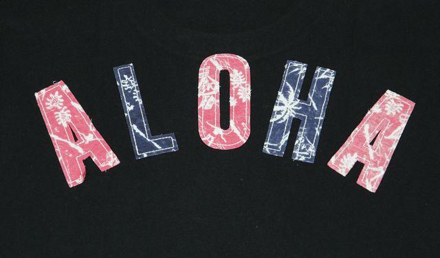 Hawaiian shop holoholo: sale anti ballistic men short sleeves t