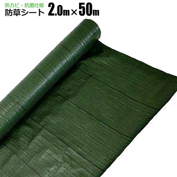シンセイ 防草シート 2m×50m 緑 抗菌 草除けシート 雑草防止シート 草おさえ 草よけシート