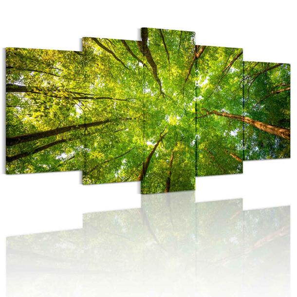 インテリア 送料無料 絵画 緑の森 壁掛け 風景 風水画 絵のある暮らしモダンアートパネル 壁画 アートパネル絵画 森林浴 キャンバス生地 5枚 高品質アートパネル 取り付け簡単!飾るだけで、玄関などお部屋がモダンに♪【inte_D1806】