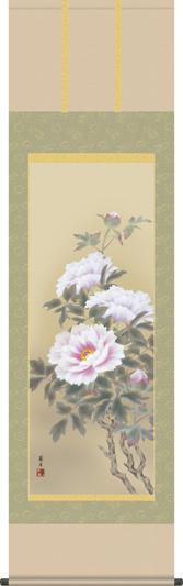 掛け軸-富貴花/吉井 蘭月(尺五・床の間に春用花鳥画掛軸をどうぞ) [送料無料]