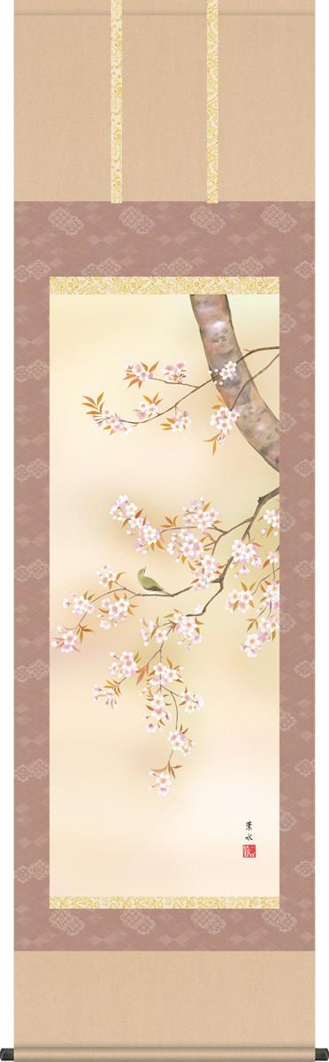 掛け軸-桜花/緒方葉水(尺五 桐箱)花鳥画掛軸・送料無料掛け軸