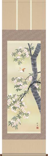 掛け軸-桜花に小鳥/長江 桂舟(尺五・床の間に春用花鳥画掛軸をどうぞ) [送料無料]