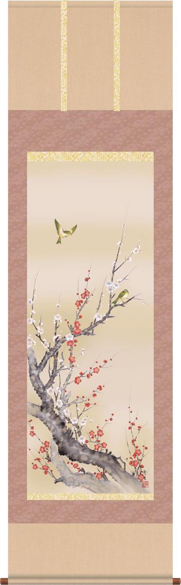 掛け軸-紅白梅に鶯/北山歩生(尺五・桐箱・風鎮付き)花鳥画掛軸・送料無料掛け軸