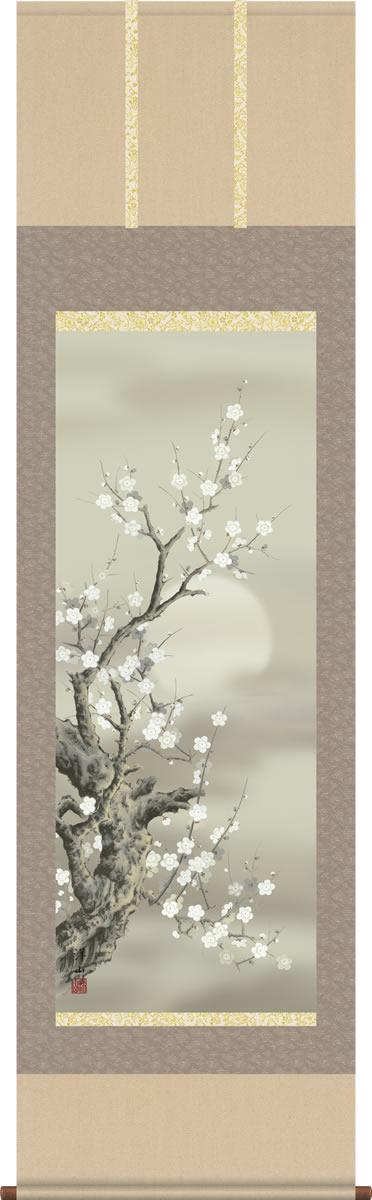 掛け軸-朧月白梅/宇崎洋山(尺五 桐箱)花鳥画掛軸 [送料無料]