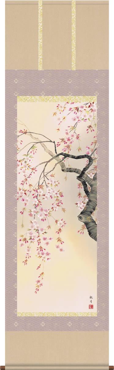 掛け軸-桜花爛漫/森山観月(尺五 桐箱)花鳥画掛軸 [送料無料]