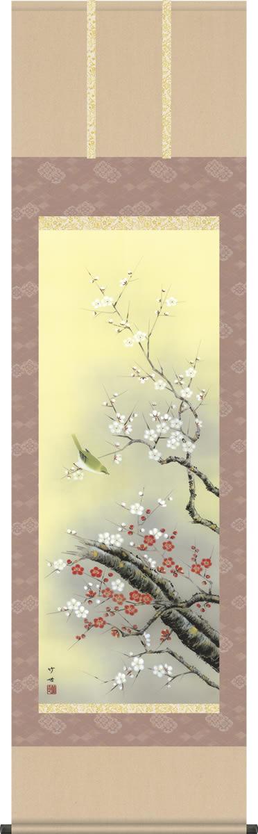 掛け軸-紅白梅に鶯/田村竹世(尺五 桐箱)花鳥画掛軸 [送料無料]