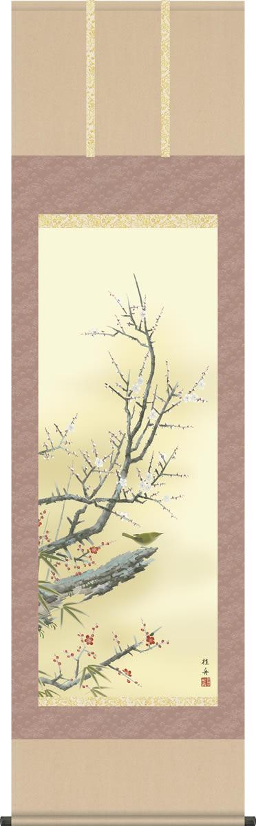 掛け軸-梅に鶯/長江桂舟(尺五 桐箱)花鳥画掛軸 [送料無料]