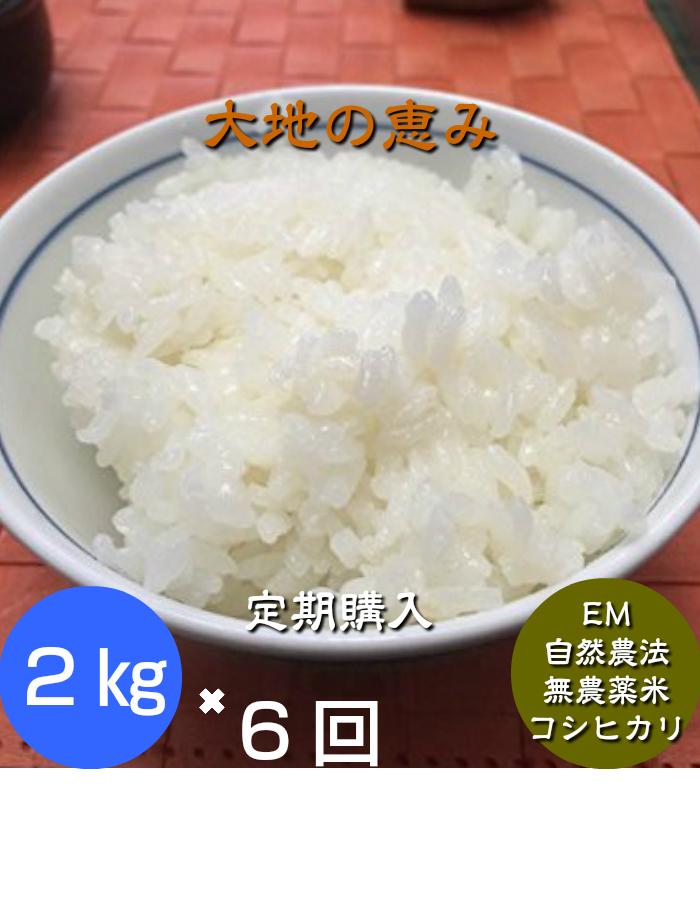 初回商品発送時に一括お支払いとなります6回分の送料込み価格です白米か玄米をお選び下さい新米は9月30日からの出荷になります。  【年間契約】「大地の恵」2kg・6回発送/令和元年産 新米・EM農法・無農薬栽培米こしひかり[一括払い](定期購入)新米は9月30日からの出荷になります。