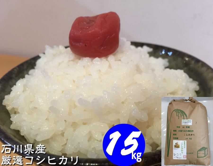 お米 【送料無料】 15kg 「加賀百万石厳選 こしひかり」 白米 玄米 5分づき精米 無洗米 からお選びください。令和元年産 新米・石川県産 平成最後のお米