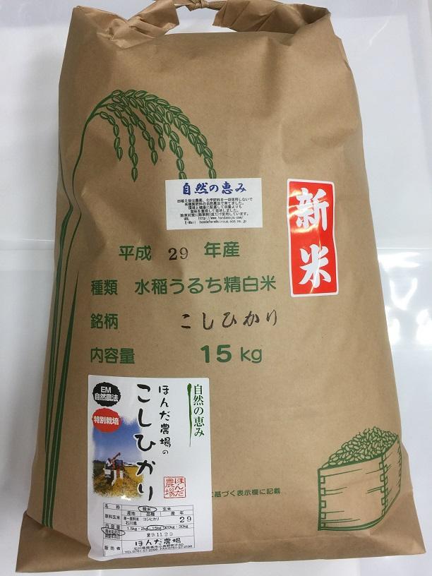 【年間契約】【送料無料】「自然農法米 こしひかり 自然の恵み」15kg・12回発送30年産新米 減農薬・特別栽培米[一括払い](定期購入)