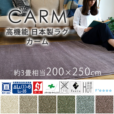 ラグマット 200×250cm(長方形) ふわふわ 『カーム』 防ダニ/防音/滑り止め/床暖房・ホットカーペット対応 全6色 スミノエ 日本製