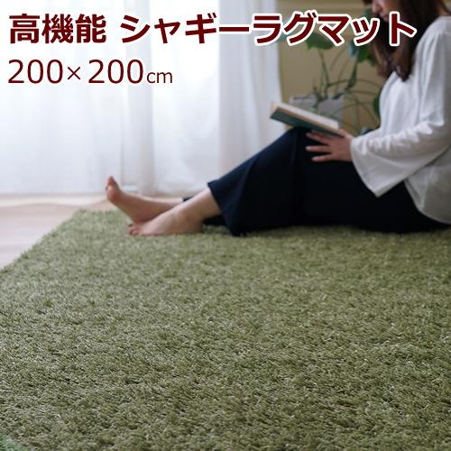 ラグマット 200×200cm(正方形) シャギー 『スミトロン クロスシャギー』 防ダニ/滑り止め/床暖房・ホットカーペット対応 全6色 スミノエ 日本製