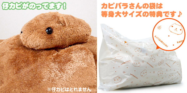 kapibara,偶然真人大小nuigurumi A,kapibara&仔kapikapibara(85厘米)