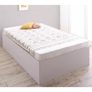 ●ポイント6.5倍●大容量収納庫付きベッド SaiyaStorage サイヤストレージ 薄型プレミアムボンネルコイルマットレス付き 浅型 ベーシック床板 シングル[00]